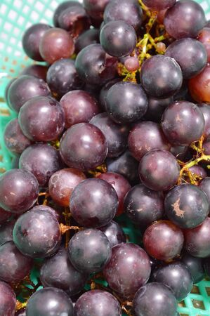red grape: red grape in basket