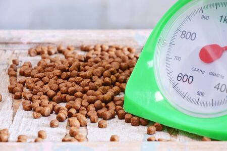 weighting: pet food and green weighting scale Stock Photo
