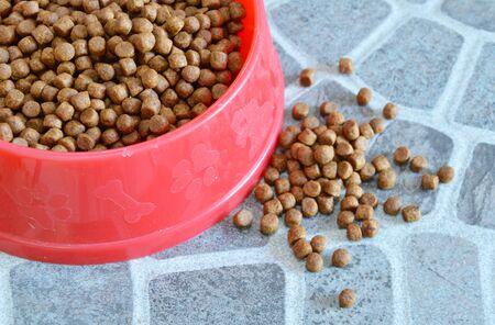 pet food: pet food in red bowl