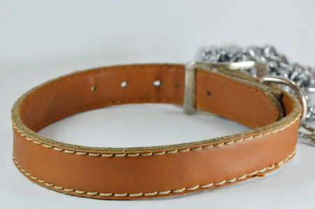 collet: dog leather collar and lead chain