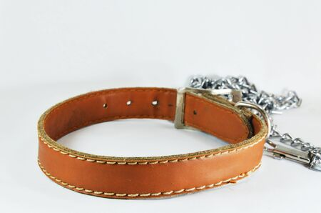 collet: dog brown leather collar and lead chain Stock Photo