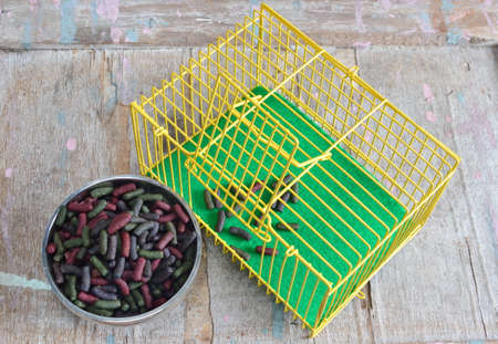 rabbit in cage: rabbit food in bowl and yellow cage Stock Photo