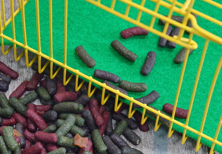 rabbit cage: rabbit food in yellow cage