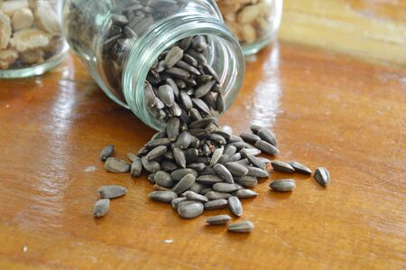 viable: sunflower seed on table Stock Photo