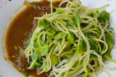 blanch: parboiled sunflower sprouts dressing Thai spicy sauce on dish Stock Photo