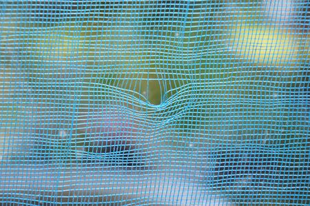 lacerate: scratch mosquito wire net in home