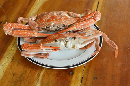 nipper: steamed flower crab on white plate
