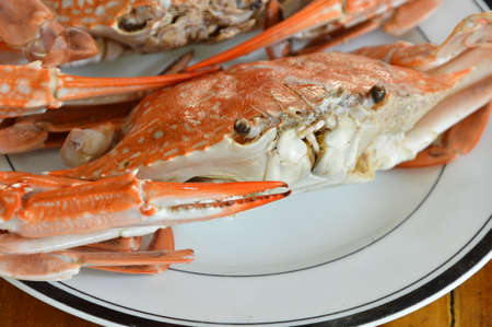 blue swimmer crab: steamed flower crab on white dish Stock Photo