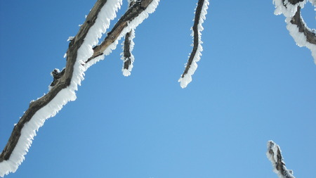 sopel lodu: Sopel na oddział w zimie Zdjęcie Seryjne