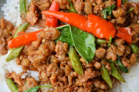 thai food: stir-fried minced pork with chilli and basil leaves on rice