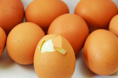 boiled egg: boiled egg cracked on white background