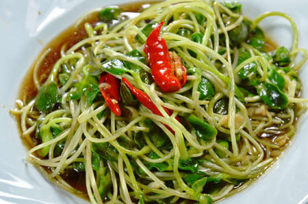 digest: stir fried sunflower sprout with oyster sauce and chili on white dish