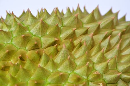 spiky: close up of durian spiky texture and background