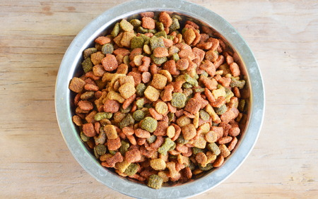 dry food: dog instant dry food in stainless bowl