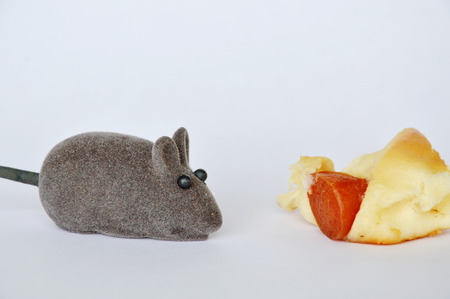 stuff toy: mouse toy and sausage bread on white background Stock Photo