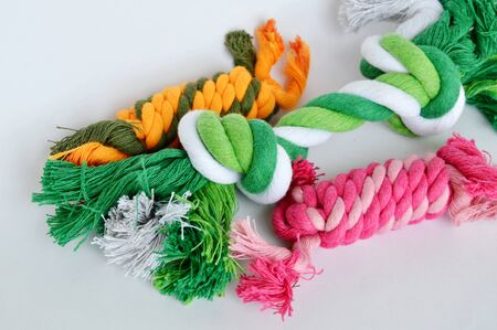 dog and cat toy colorful fabric rope on white background