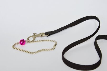 leashes: dog and cat necklace with fabric leashes on white background