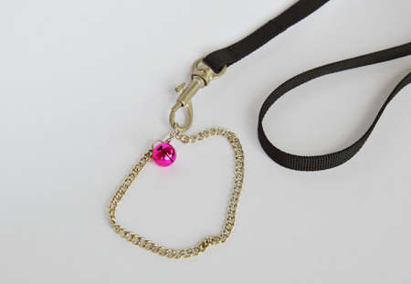 leashes: cat and dog necklace with black fabric leashes on white background
