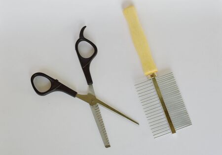 clippers dog grooming  and comb on white background