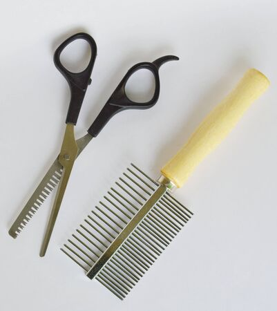 clippers comb: clippers dog grooming  and comb on white background