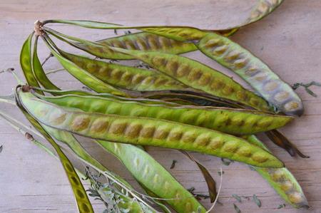 tamarindo: acacia fresca sobre tabla de madera Foto de archivo