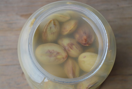 food preservation: pickled bitter bean in salt water bottle Stock Photo
