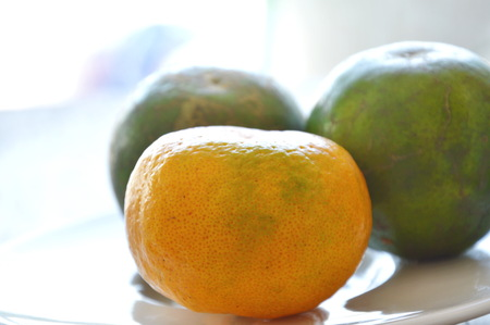 tangerine ripen and unripe on dish Banque d'images