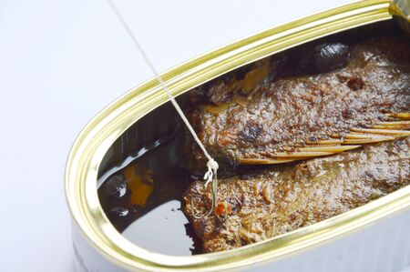animal trap: fishing hook and net catch salt fried fish in tin canned on white background