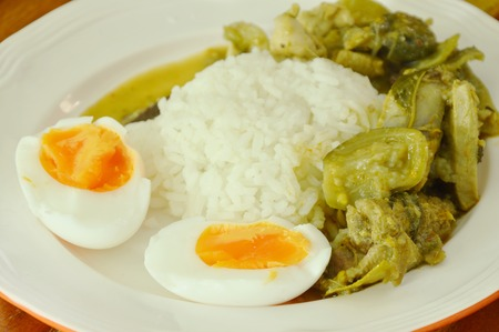 spicy chicken green curry with boiled egg on rice Stock Photo