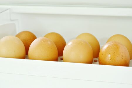 brown egg stored on tray in refrigerator door Stock Photo