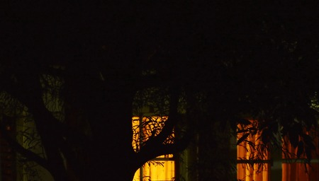 Light from home window and tree on foreground in dark night