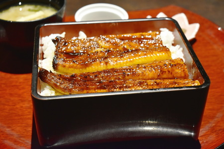 grilled eel fish or unagi with soy sauce on rice premium Japanese food