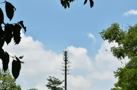 telecommunication pole with plant growth on cloud and sky background