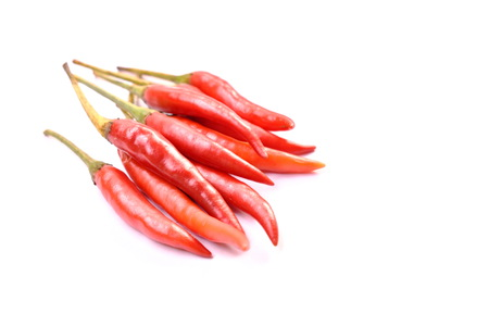 red chili herb and ingredient arranging on white background