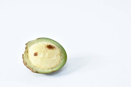 Djenkol bean or luk nieng fruit tropical plant on white background Reklamní fotografie