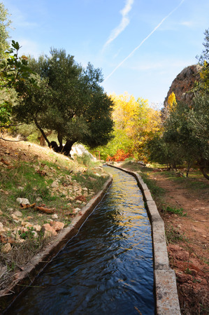 channeling: channeling of water for the irrigation of the orchards