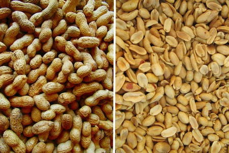 primer: whole peanuts spars.
