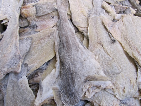Dried salted cod Stock Photo - 12459421