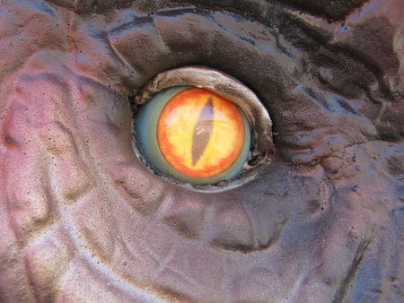 Dinosaur eye, vertical pupil  photo