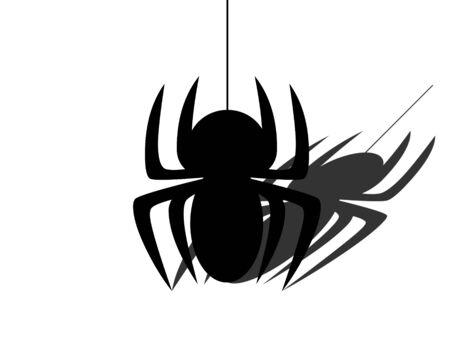 arachnophobia: Spider