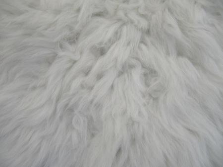 White goatskin texture. photo