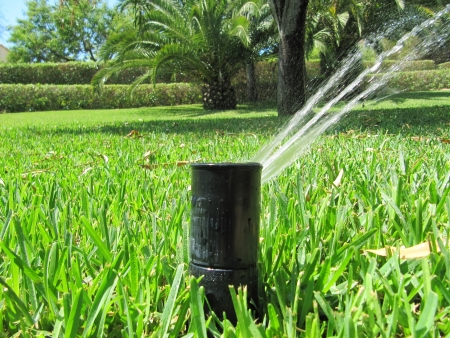 sprinkler: Irrigation system for garden