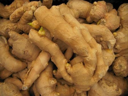 ginger root:  Ginger root. (Zingiber officinale)