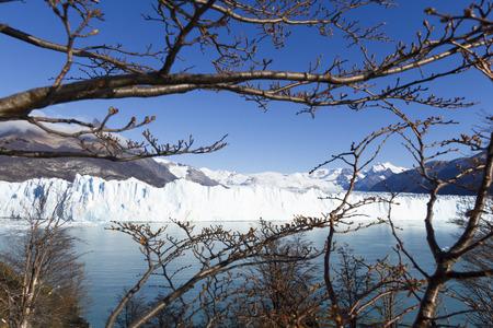 Perito Moreno Glacier near El Calafate In Argentina. Imagens - 105981591