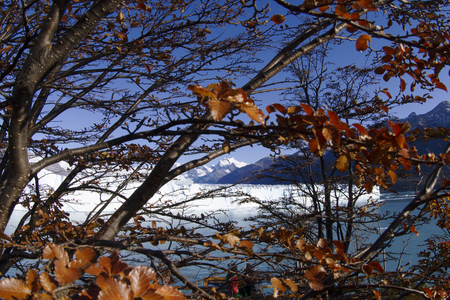 Perito Moreno Glacier near El Calafate In Argentina. Imagens - 105981586