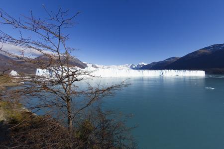 Perito Moreno Glacier near El Calafate In Argentina. Imagens - 105981590