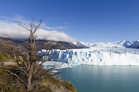 Perito Moreno Glacier near El Calafate In Argentina. Imagens - 105983524