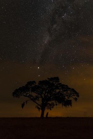 Starry Night In Senges, Brazil.