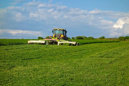 mows: tractor mows a green clover Stock Photo