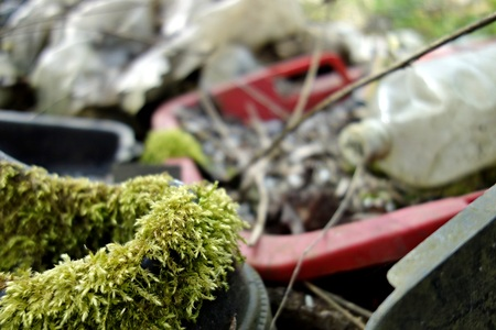 the thrown: municipal waste thrown out in nature